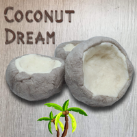 Coconut Dream Bubble Bar