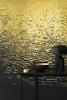 Reflection Wallcovering - Gold