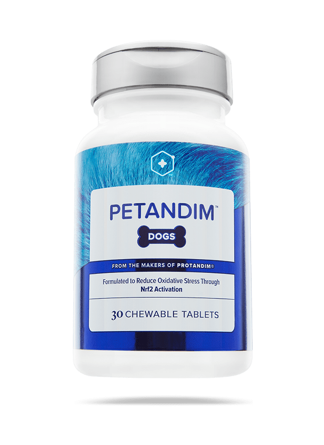 Petandim for Dogs