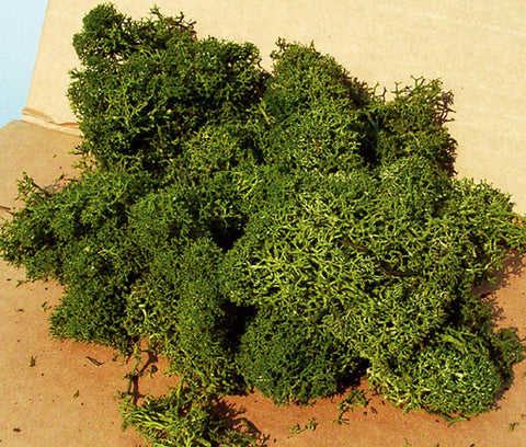 Heki 3234 Lichen Medium Green 250g