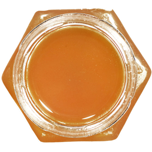Catskill Mountain Spring Honey