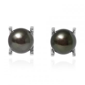 Freshwater Cultured Black Pearl Claw Set Stud Earrings - Pobjoy Diamonds