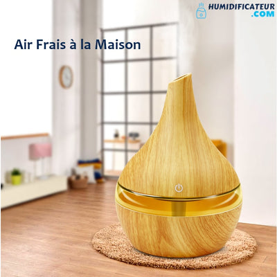 Humidificateur d'air Maison Air Frais