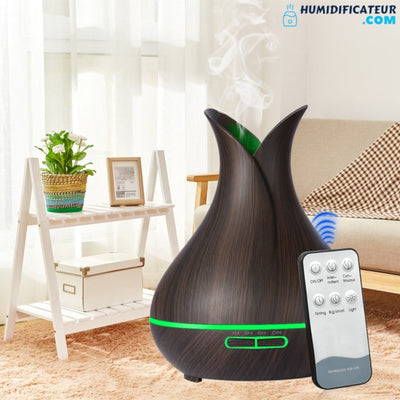 Humidificateur d'Air Maison Air Pur