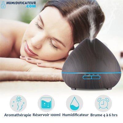 Humidificateur d'air Maison Bulbe Floral Aromathérapie