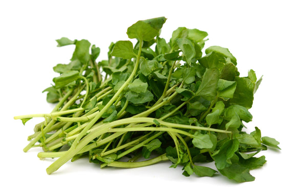 Water Cress / Tongsoy