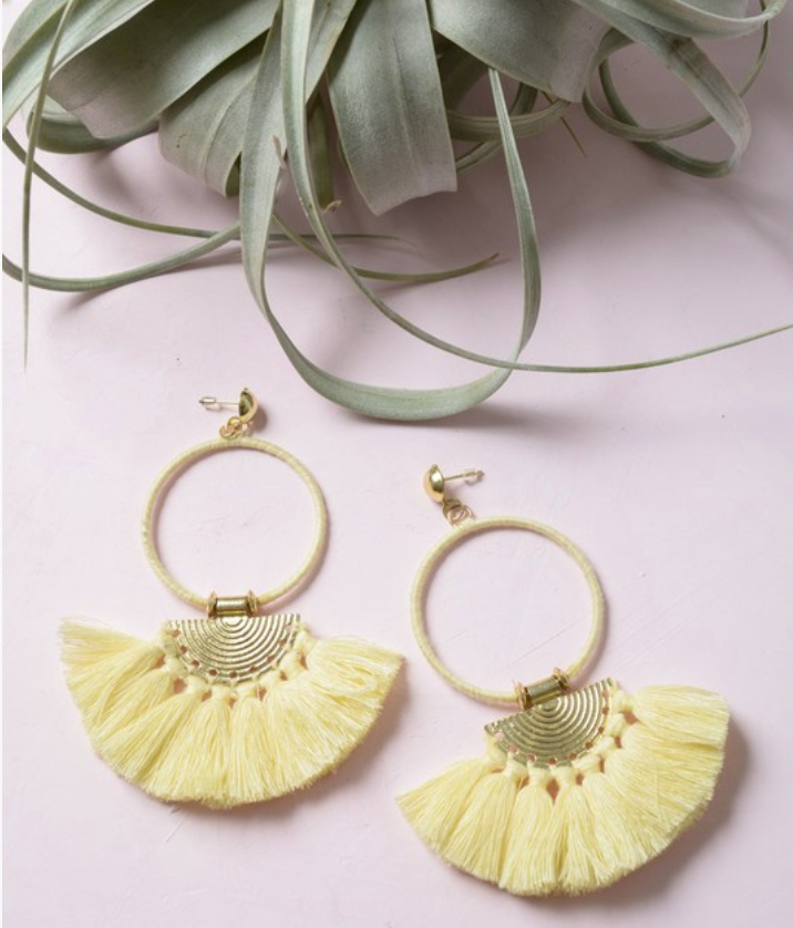 Hoop and Tassel Drop Earrings