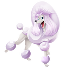 Laughing Poodle