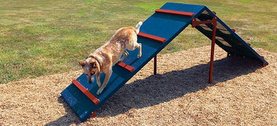 Bark Park King Of The Hill Dog Exercise Equipment