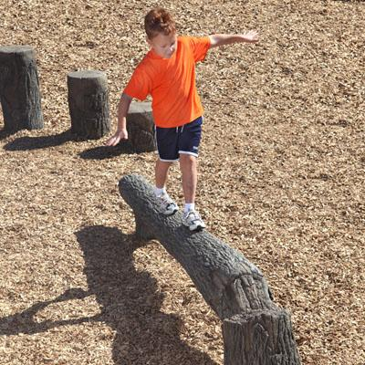 Nature Themed Fallen Tree Balance Beam - 8 Foot