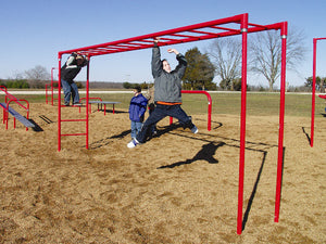 Horizontal Ladder Fitness Course Section