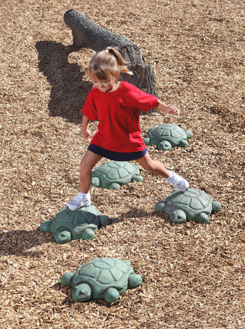 Nature Themed Turtle Steppers - Set Of 5