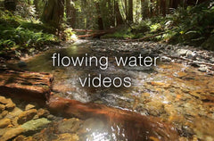 Flowing Water Videos - Collection