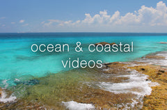 Ocean Relaxation Videos - Collection
