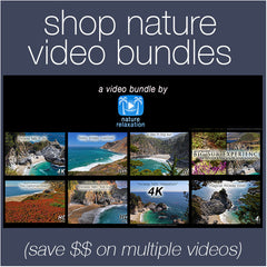 Shop Nature Video Bundles