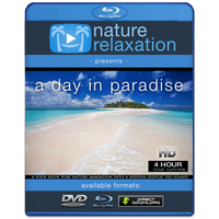 """A Day In Paradise"" Fiji Islands 4 HR Dynamic Pure Nature Experience"