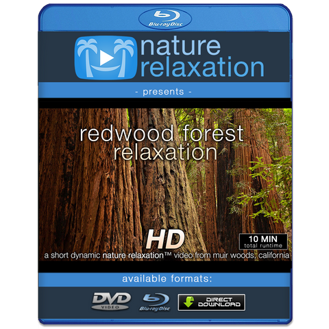 """Redwood Forest Relaxation"" Healing  10 Minute Nature Relaxation Video HD 1080p"