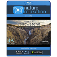 """Summer in Yellowstone"" 1.25HR Dynamic 4K Ambient Nature Film w Music"