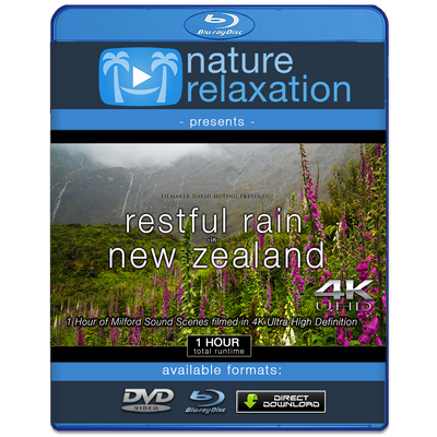 """Restful Rain in New Zealand"" 1 HR Dynamic 4K Ambient Nature Film"