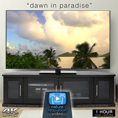 """Dawn in Paradise"" 4K 1 Hour Dynamic Nature Film"