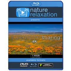 """Superbloom Soaring"" Spring Bloom 1 Hour Aerial Film + Music 4K"