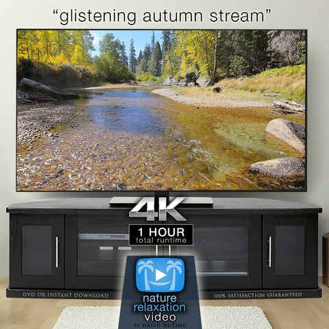 """Glistening Autumn Stream"" 1 HR Static Nature Video 4K"