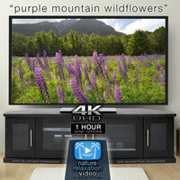 """Purple Mountain Wildflowers"" 1 HR  Static Nature Video New Zealand 4K"
