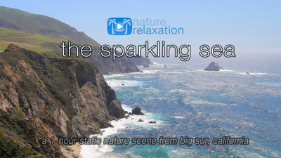 """The Sparkling Sea"" 1 HR Static 4K Nature Video from Big Sur"