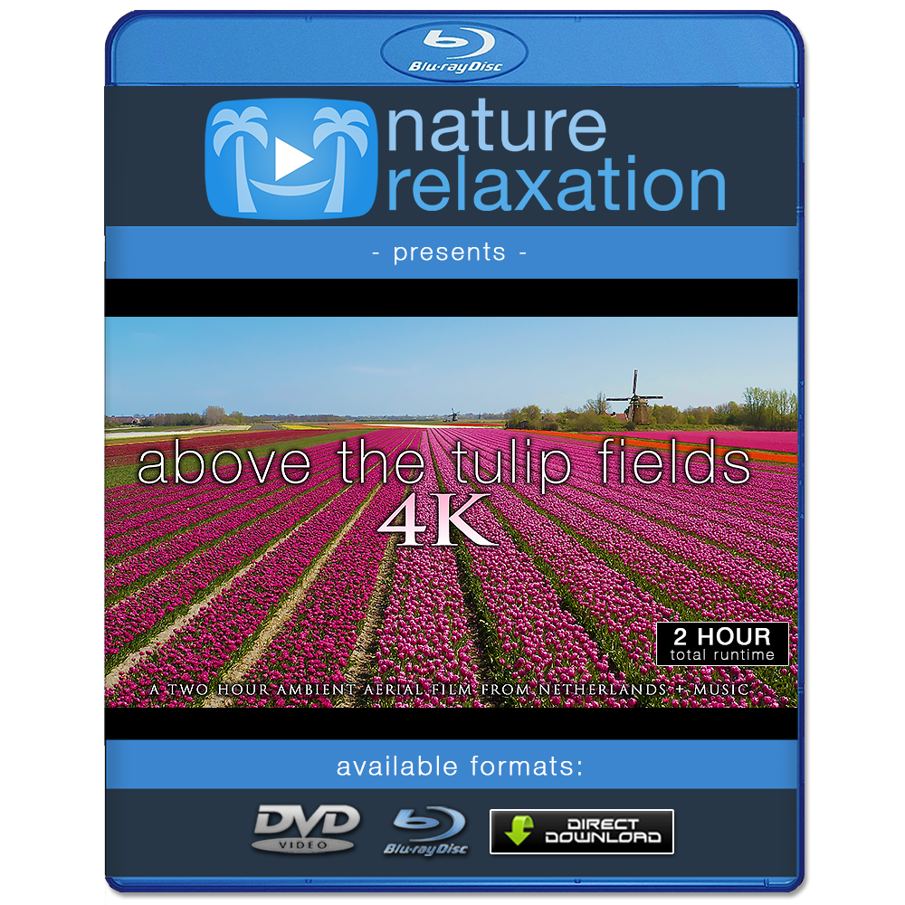 """Above the Tulip Fields"" Holland 2-Hour Aerial Nature Film + Piano Music 4K"