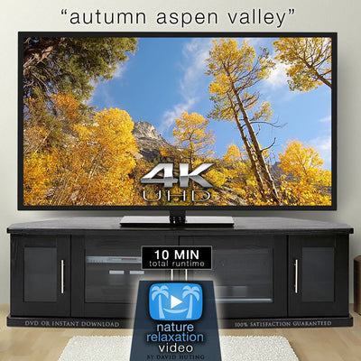 """Autumn Aspen Valley Relaxation"" 10 MIN Music + Nature Video 4K"