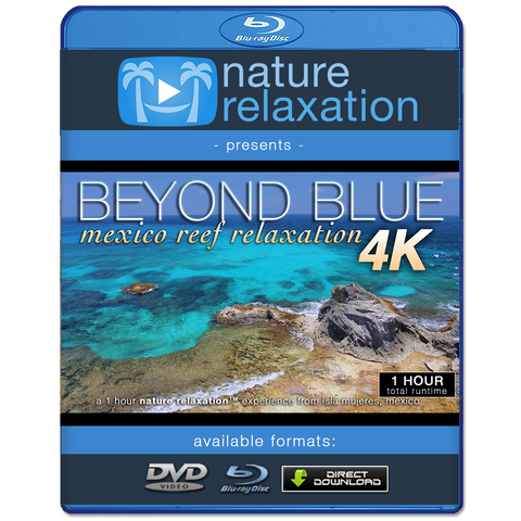 """Beyond Blue"" Mexico Reef 1 Hour 4K Nature Relaxation Video"