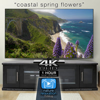 """Coastal Spring Flowers"" 1 Hour Dynamic Nature Film - Big Sur California 2020"