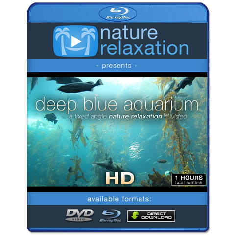 """Deep Blue Aquarium"" 1 HR Static Nature Video Scene HD"