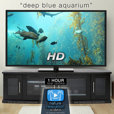 """Deep Blue Aquarium"" w/ Music 1 HR Static Nature Video Scene HD"