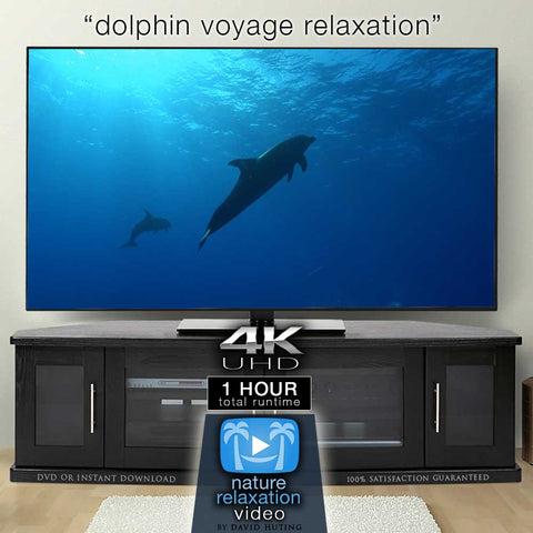 """Dolphin Voyage Relaxation"" 1 Hour Dynamic 4K Music Video"