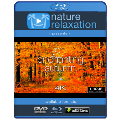 """Enchanting Autumn"" 1 or 11 HR Fall Nature Film in 4K UHD"