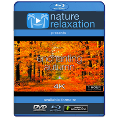 """Enchanting Autumn"" 1 HR Dynamic 4K UHD Nature Video"