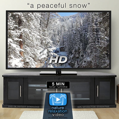 """A Peaceful Snow"" Short 5 MIN Winter Music Video HD 1080p"