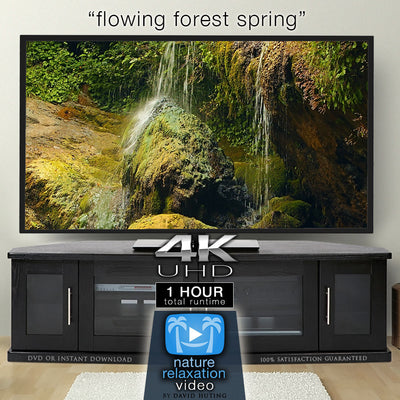 """Flowing Forest Spring"" 1 HR  Static Nature Video 4K"