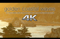 """Golden Coastal Waves"" 1 HR Static 4K Nature Video"
