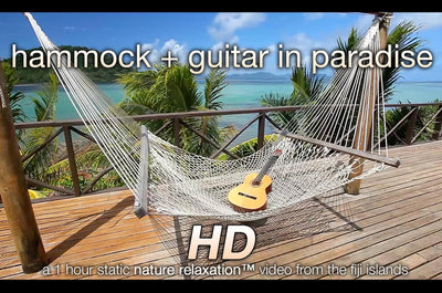 """Hammock + Guitar in Paradise"" 1 HR Static Nature Video Scene HD"