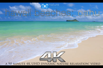 """Hawaii Beaches: Oahu"" 90 MIN Dynamic Nature Video 4K"