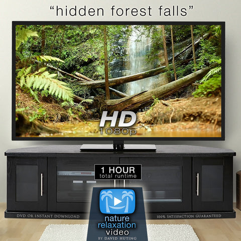"""Hidden Forest Falls"" Dynamic HD Nature Relaxation Video 1 Hour 1080p"