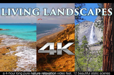"""Living Landscapes"" 4 HR Nature Relaxation Video 4K UHD"