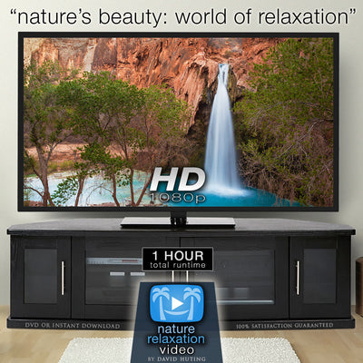 """Nature's Beauty: World of Relaxation"" 1 HR Dynamic Video w Music"