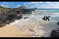 """Oahu Morning Waves"" Hawaii 1 HR Still 4K Nature Video"