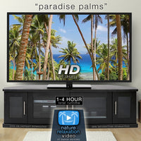 """Paradise Palms"" Tropical Fiji Static Nature Video Scene"
