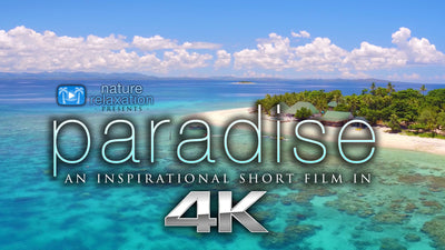 """Paradise"" a Short Inspirational Aerial 4K Music Video"