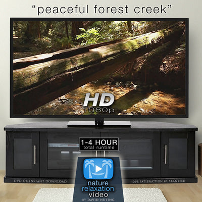 """Peaceful Forest Creek"" Static Nature Screensaver HD 1080p"