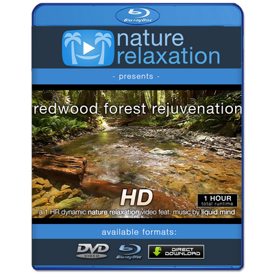 """Redwood Forest Rejuvenation"" HD Nature Relaxation Video 1 Hour 1080p"